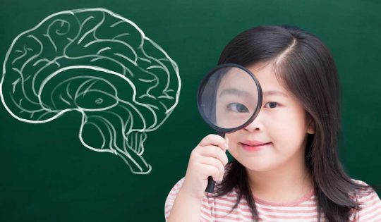 Being a FASD detective – connecting brain and behaviour